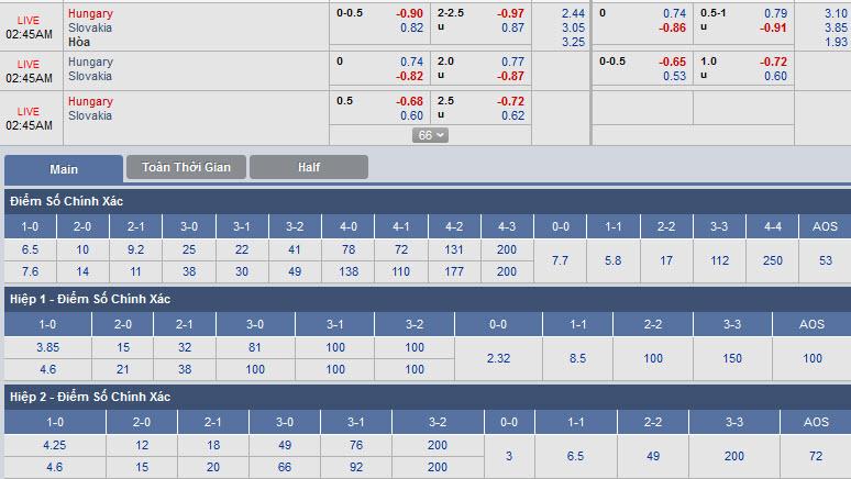 hungary-vs-slovakia-01h45-ngay-10-09-1